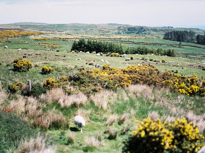 Ireland_005